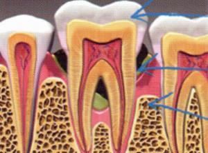 Dentiste Moëlan